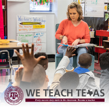 We Teach Texas Website Link